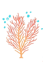watercolor-coral-collection_52683-6552_edited_edited.png