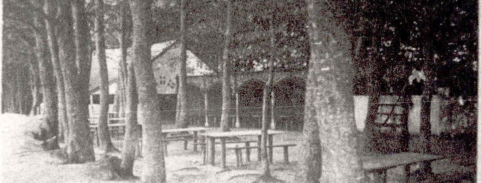 Skovpavillonen i Floes Skov, under de store bøgetræer.  Fra Gunnar Vestergaard's billedsamling.