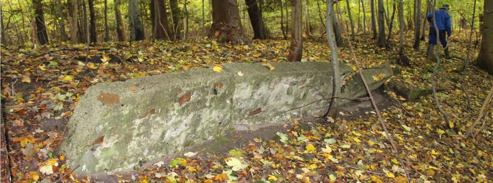 De sidster rester af pavillionen i Floes Skov