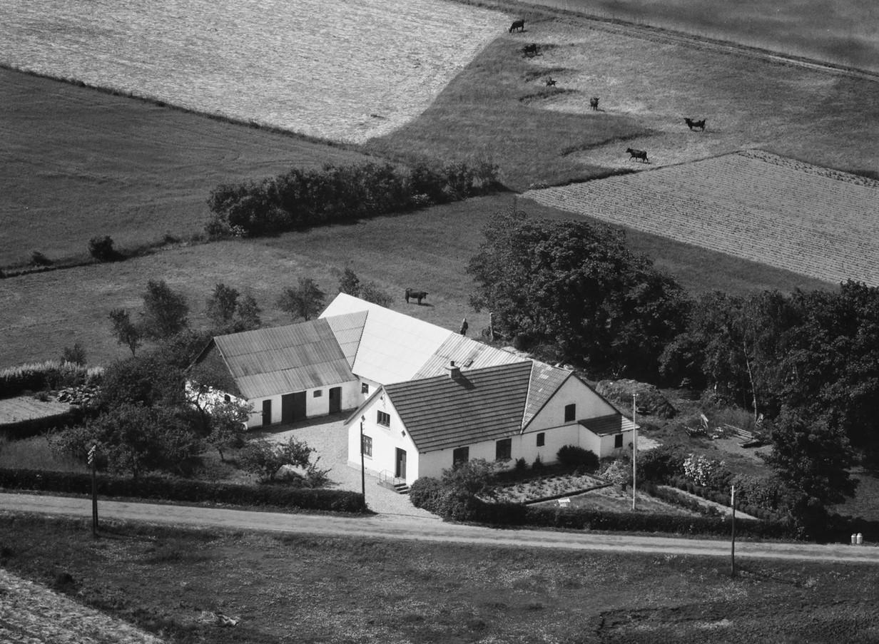 Virringvej 2 1959.jpg
