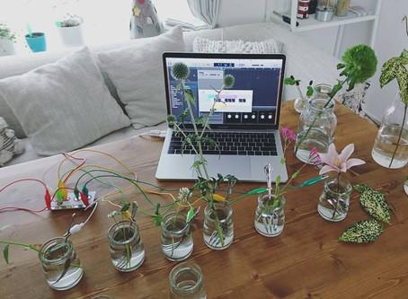お花で作曲