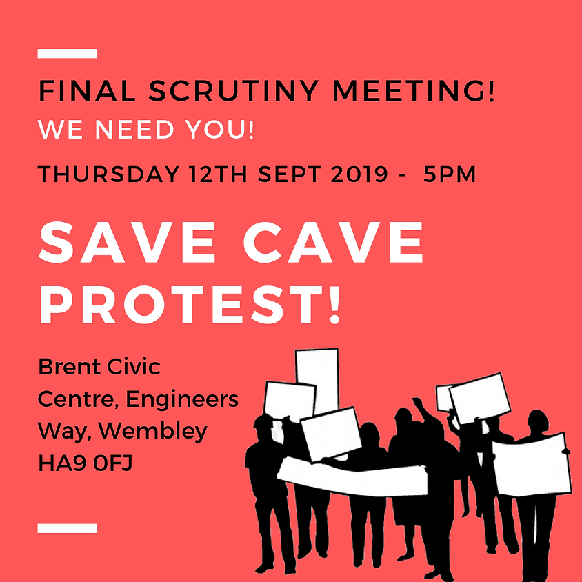 SAVE CAVE PROTEST FINAL SCRUTINY MEETING