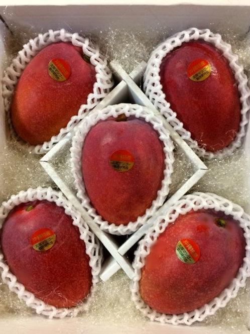 贈答用アップルマンゴー 秀品 2kg