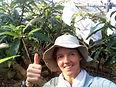儀間カースティンいずみマンゴー園