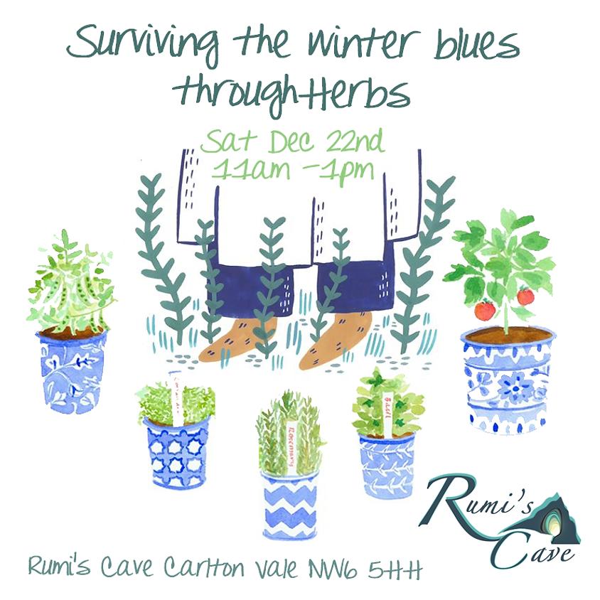 Surviving the winter blues through herbs
