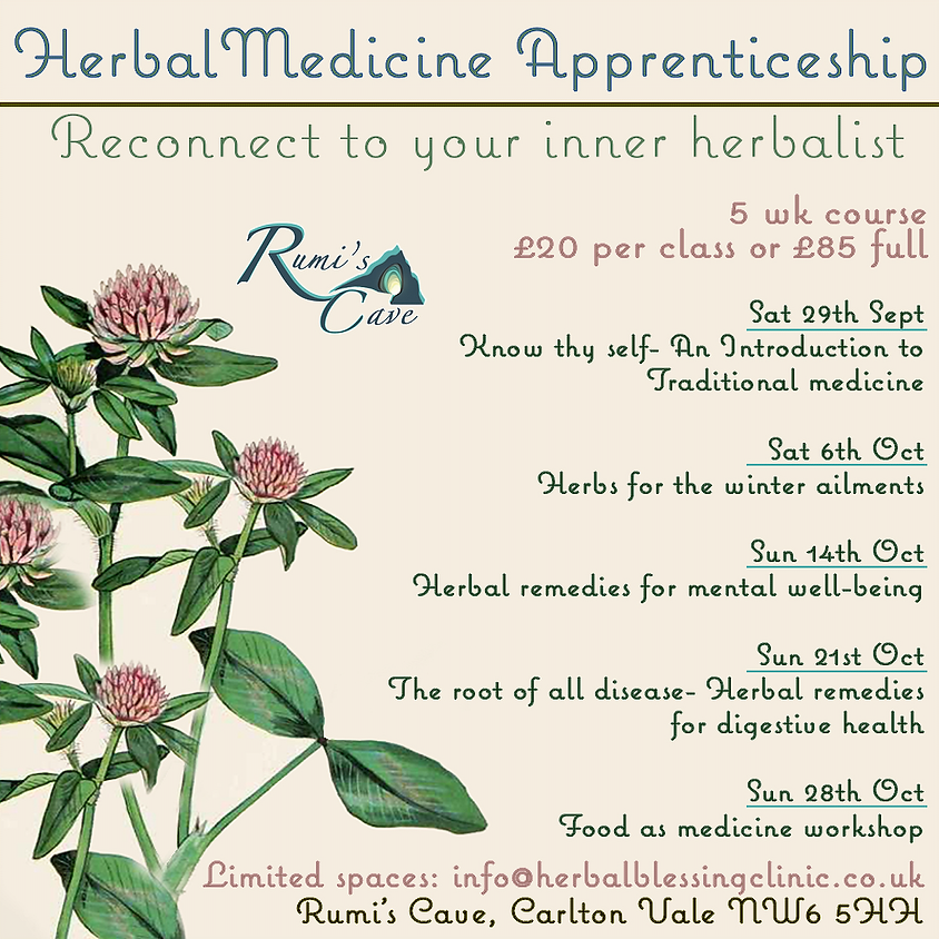 Herbal Medicine Apprenticeship - Reconnect to your inner herbalist