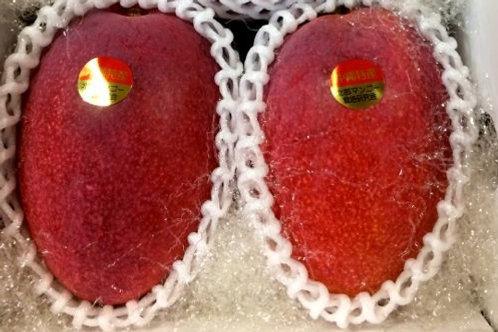 贈答用アップルマンゴー 秀品1kg2玉