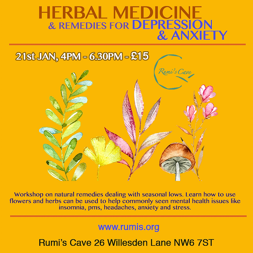 Herbal medicine and remedies for depression and anxiety
