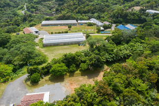 arial view of property from above cottag