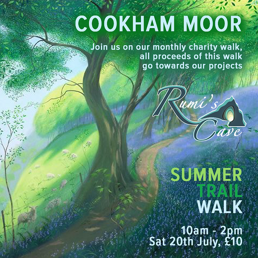 Rumi's outings: Cookham Moor Summer Walk