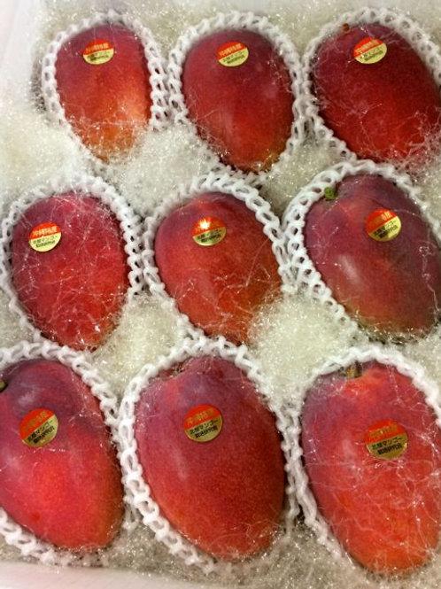 贈答用アップルマンゴー 秀品 4kg