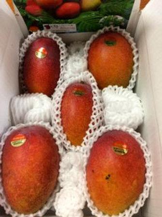 家庭用アップルマンゴー2kg 4〜7玉