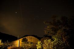 night sky near green houses.jpg