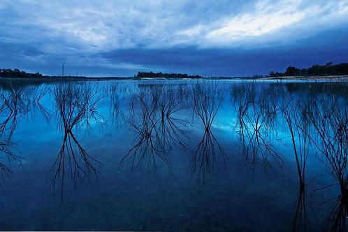 """Evening Blues"""