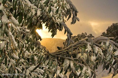 """Luv Winter"""