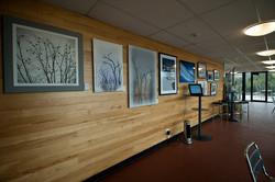 Exhibition, Lake Mountain