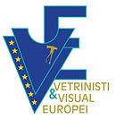 logo-vetrinisti-europei.jpg