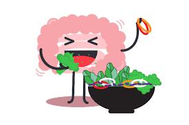 Ecco perché si ingrassa anche solo mangiando insalata!!