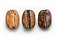 Coffee-Beans-Roasted.png