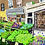 Thumbnail: Columbia Road Flower Market