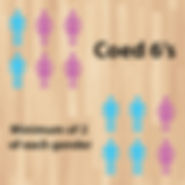 League Icons - indoor-coed6s-01.jpg