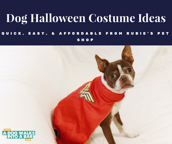Fun and Easy Dog Halloween Costumes