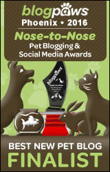 "We are a finalist for the BlogPaws ""Best New Pet Blog"" Nose-to-Nose Award"