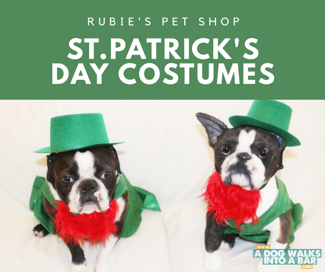 Pet Costumes for St. Patrick's Day