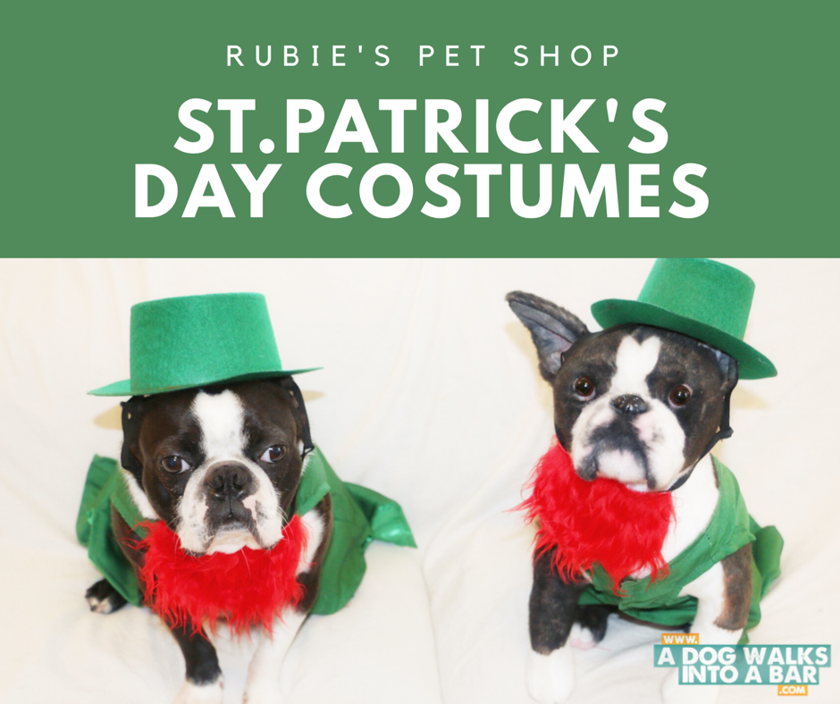 Yoda in his St. Patrick's Day costume from Rubie's Pet Shop