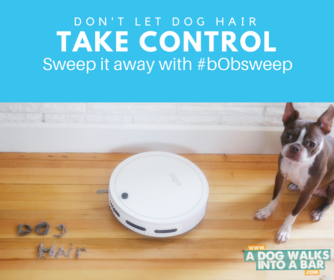 Sucking Up Dog Hair and Dirt with #bObsweep