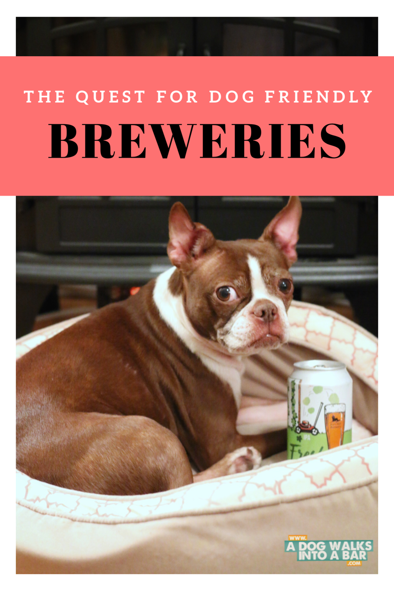 Looking for Dog Friendly Breweries across the country
