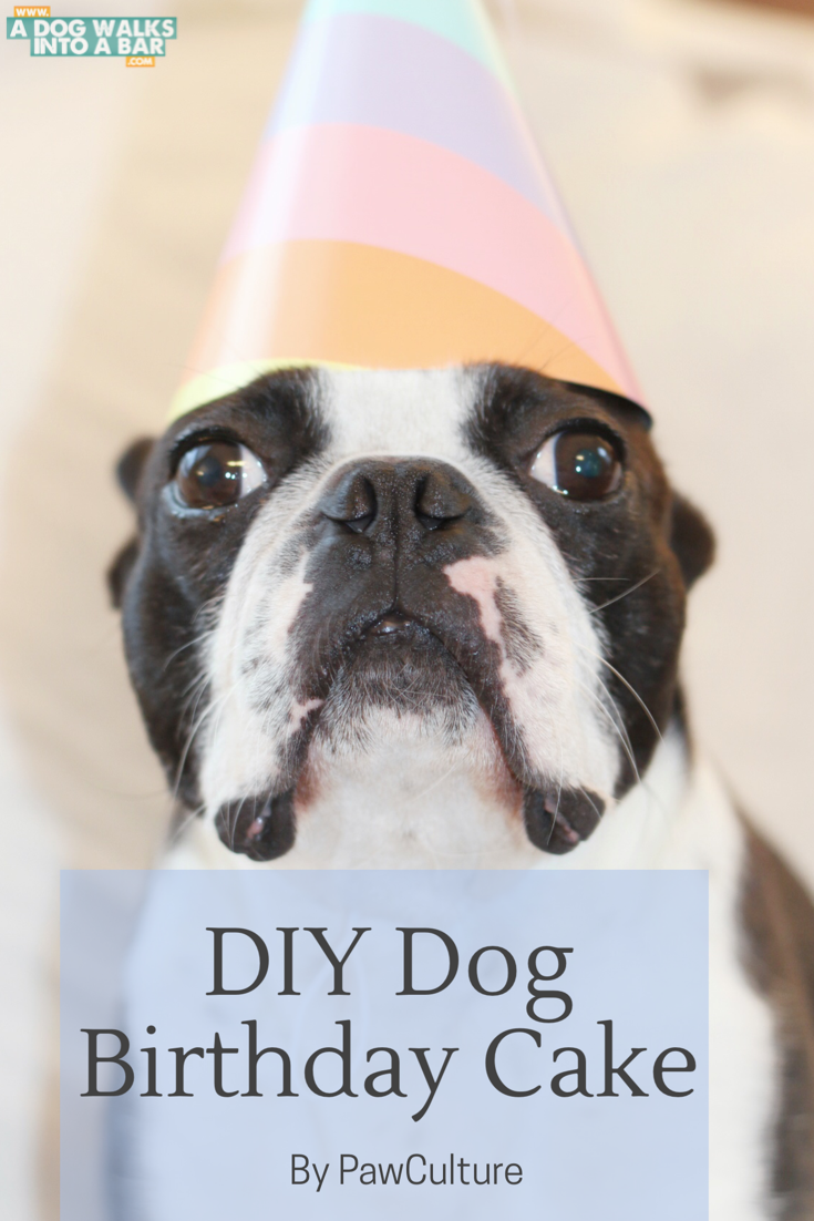 DIY dog birthday cake from PawCulture