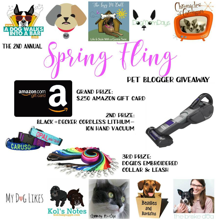 Prizes for the spring fling giveaway