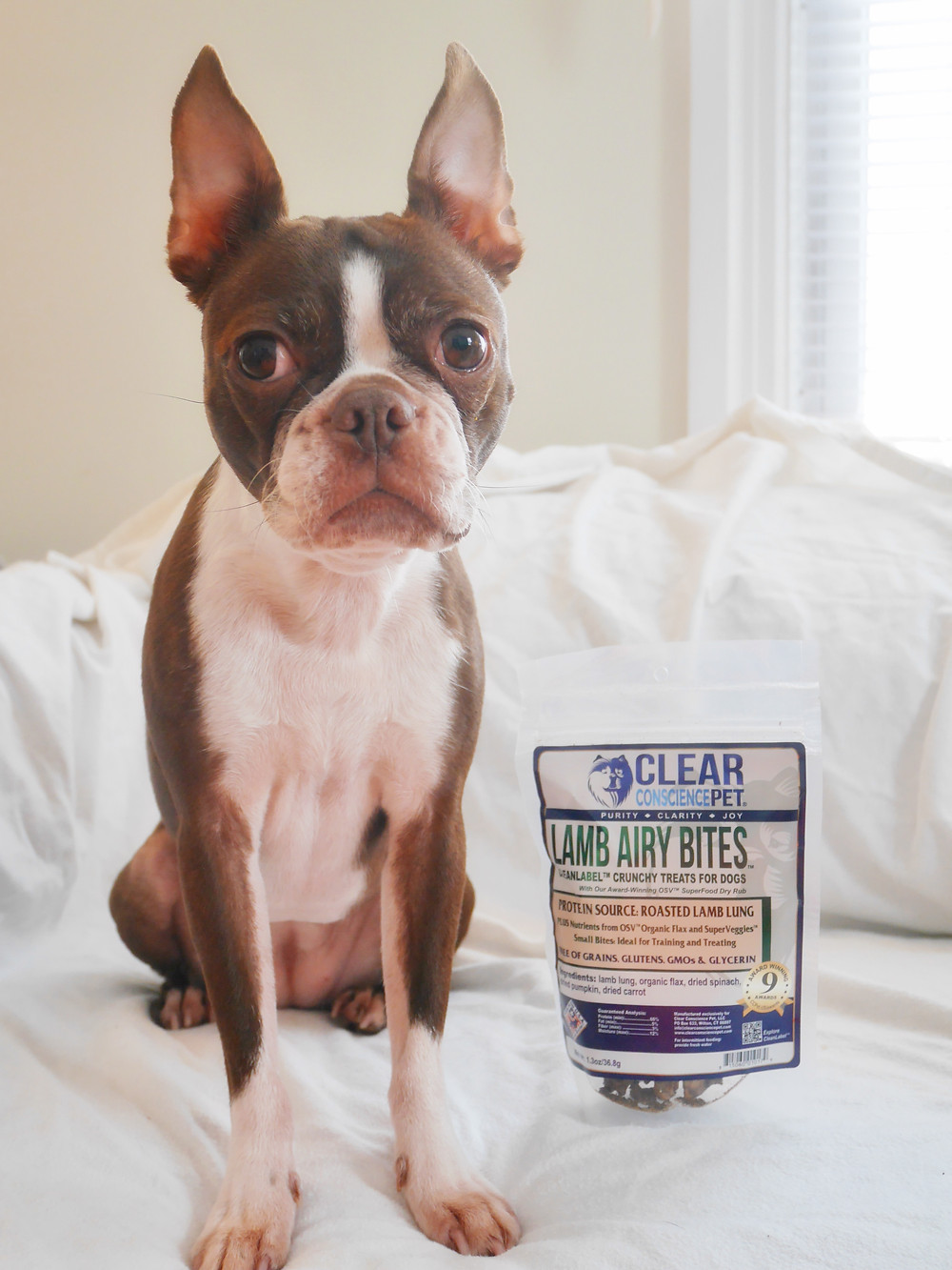 Bean & Lamb Airy Bites by Clear Conscience Pet