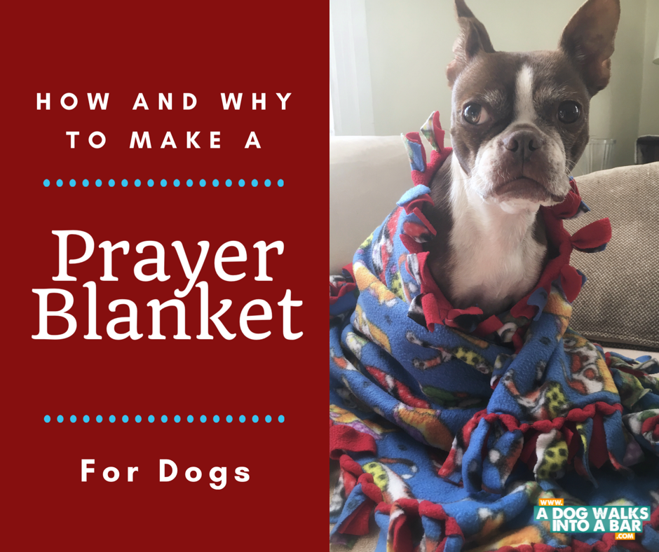 Bean snuggles in the prayer blanket she received after her Mast Cell Tumor Diagnosis