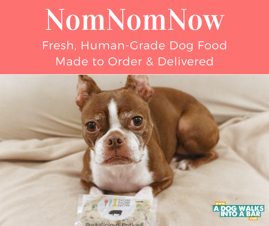 NomNomNow is fresh dog food delivered to your home