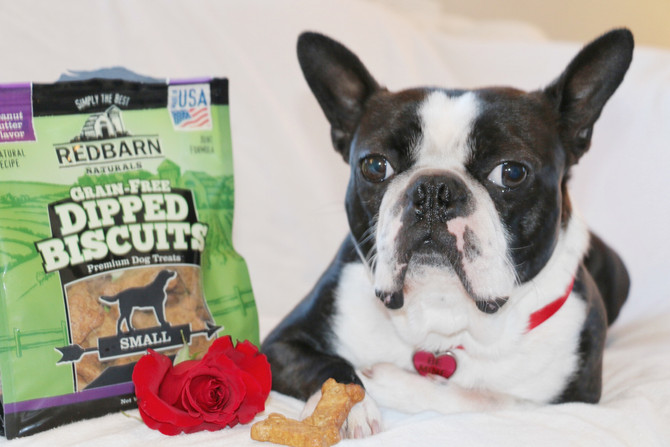 WIN RedBarn Goodies with #WhyILoveMyPet