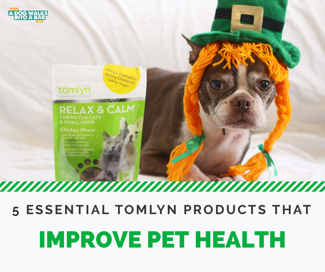 Five Essential Tomlyn Products to Improve Dog Health