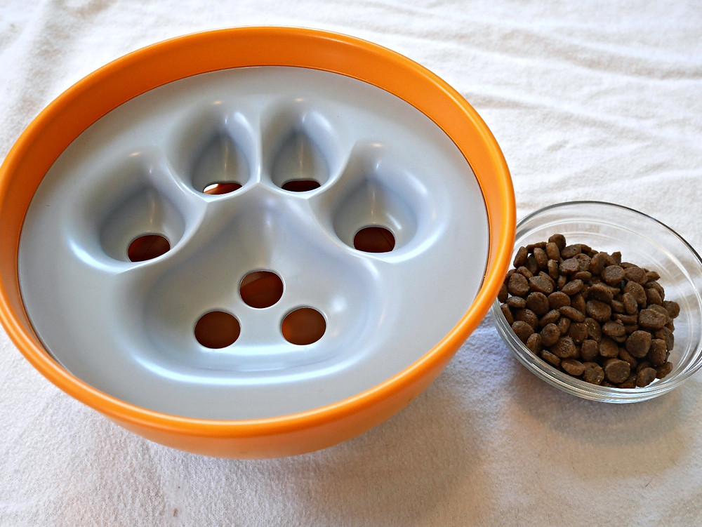 A serving of kibble is ready to go