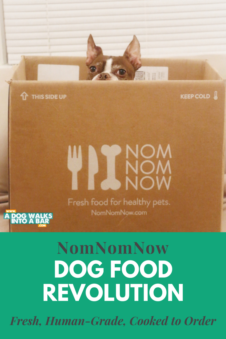 Fresh dog food delivery from NomNomNow