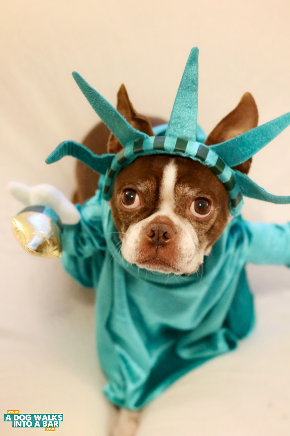 statue of liberty dog costume