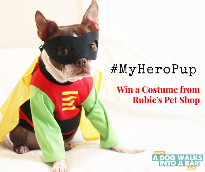 How is your Dog a Superhero and GIVEAWAY