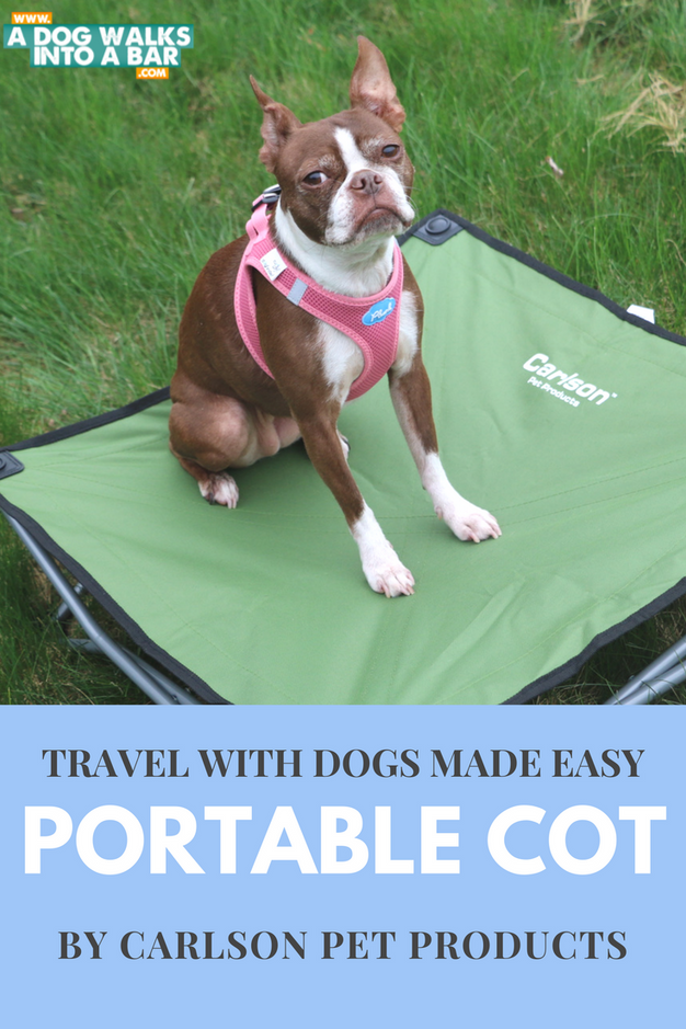 Bean Lounging On Her Portable Pet Cot From Carlson Pet Products
