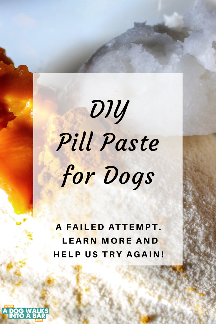DIY Pill Paste for Dogs