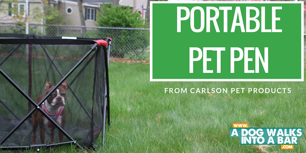 Bean enjoying the sun in our portable pet pen from carlson pet products