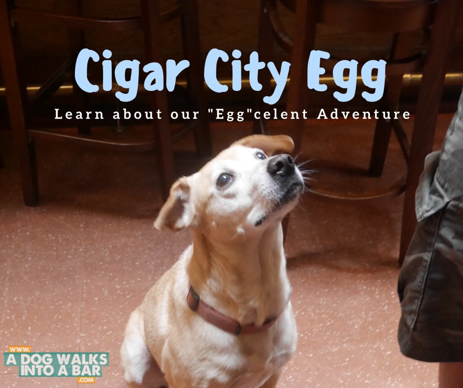 Egg the dog from Cigar City Brewing