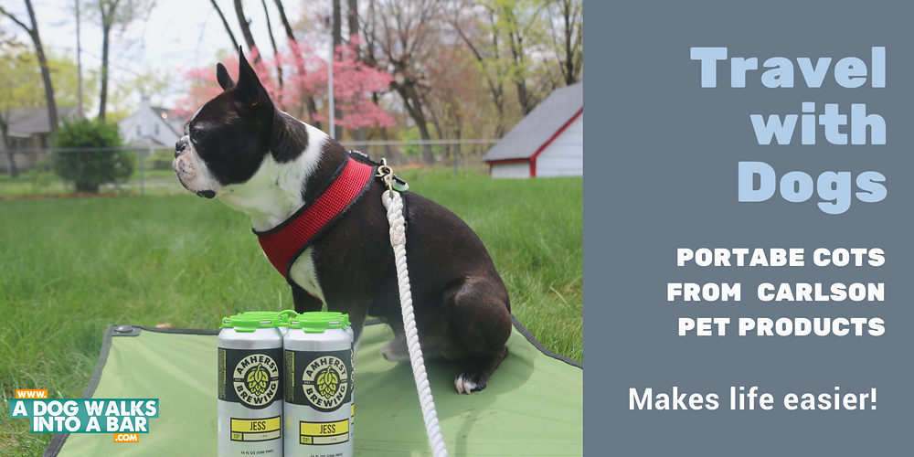 Yoda lounging on his Portable Pet Cot from Carlson Pet Products along with Beer from Amherst Brewing Company