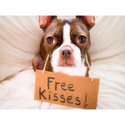 free kisses.jpg