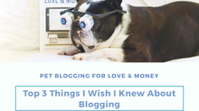 The Top Three Things I Wish I Knew About Blogging