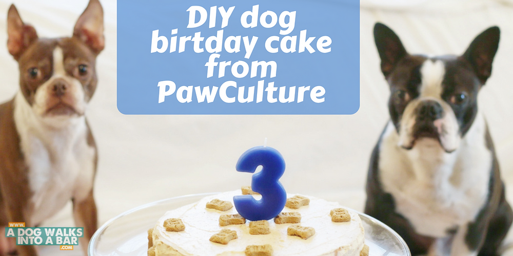 How to make a DIY dog birthday cake on PawCulture